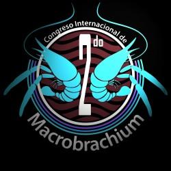 logo cong macro invertidlindonn